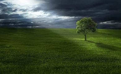 promień światła przebijający się przez ciemne chmury, oświetlający drzewo na zielonej polanie.
